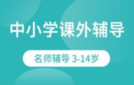 深圳中小学课外辅导