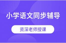 深圳小学语文同步辅导